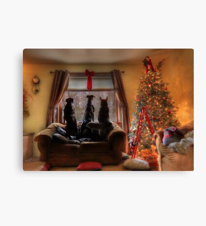 Watching for Santa Canvas Print