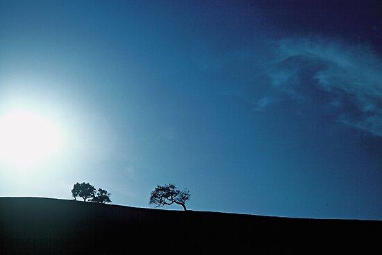 pegasus... by Allan  Erickson