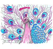 Pink Peacock Photographic Print