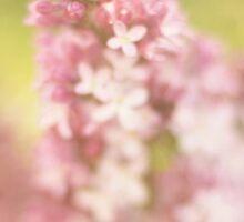 Spring's Whisper Sticker