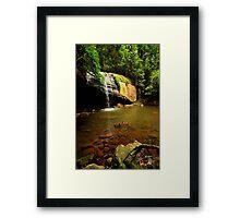 sunshine coast  Buderim Falls  Framed Print
