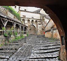 Draculas City by ivDAnu