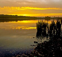 Sunrise on Whitlingham Broad by Gary Rayner