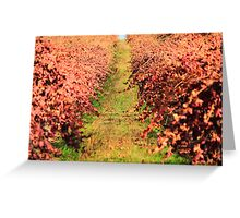 Winter Grape Vines Greeting Card