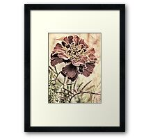 Fading Fluidity Framed Print