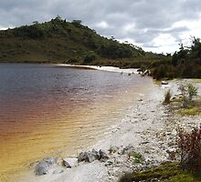 The Wilds of Tasmania. by CelticHorse