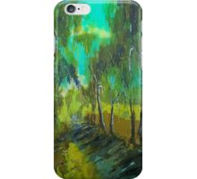 Along the silk road, Seymour Vic Australia iPhone Case/Skin