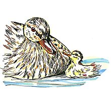 Mother duck and baby duckling Photographic Print