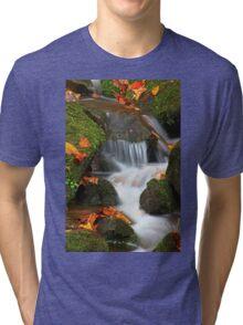 CASCADE,AUTUMN Tri-blend T-Shirt