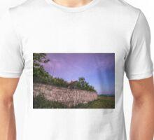 Home alone Unisex T-Shirt