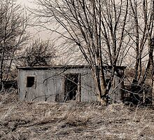 Dead Shed by Ogre