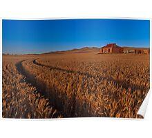 Sunset on Burra Homestead Ruin Poster