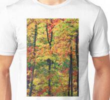 FOREST,AUTUMN Unisex T-Shirt