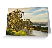 Captain Cook Creek, Bruny Island Greeting Card