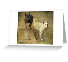 Happiness Is My Chihuahua Girlz Greeting Card