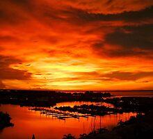 Chilli Skies by Lynette Higgs