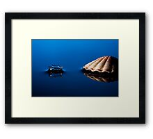 Shell in the Blue Framed Print