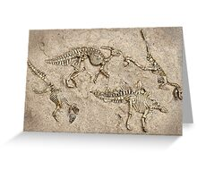 Breaking news:  Dinosaur dig unearths human skull! Greeting Card
