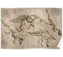Breaking news:  Dinosaur dig unearths human skull! Poster
