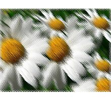 Daisey Screen  Photographic Print