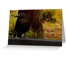 The Clever Crow Greeting Card