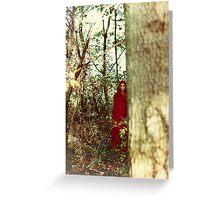 Red cloak teenage girl in the woods Greeting Card
