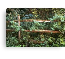 Old Country Fence Canvas Print