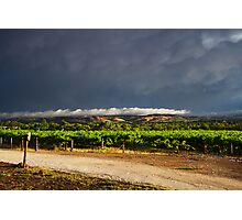 Stormy Day in the Barossa Photographic Print