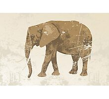 Vintage poster with elephant Photographic Print