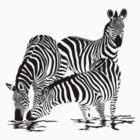 Zebra T-Shirt by parko