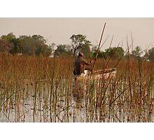 fisherman in the Okavango Delta Photographic Print