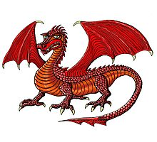 Red Dragon cartoon drawing art Photographic Print