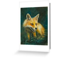 Fox. Greeting Card