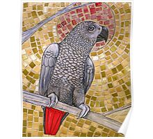 African Grey Sunset Poster