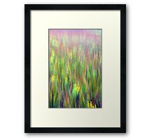 A field of grasses Kitty Todd Nature Preserve  Framed Print