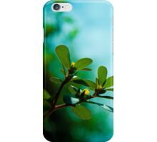 Love nature iPhone Case/Skin