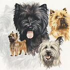 Cairn Terrier with Ghost Image by BarbBarcikKeith