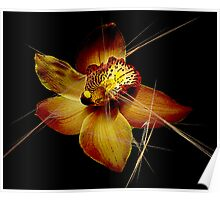 Golden Orchid Poster