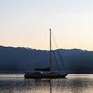 Sailing The Bay by NancyC