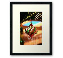 South FL Decorations Framed Print