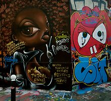 Paris Graffiti 2011 VII by Louise Fahy