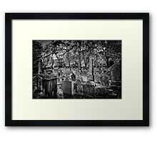 Beautiful Resting Place Framed Print