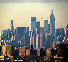 Empire State birdies, New York City by Alberto  DeJesus