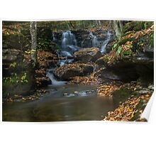 Autumn Leaves on Miners Falls Poster