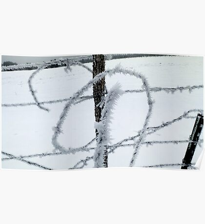Barbed Wire and Ice Poster