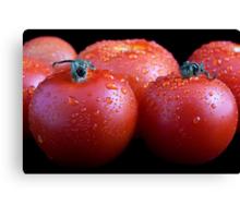 Wet whole tomatos Canvas Print