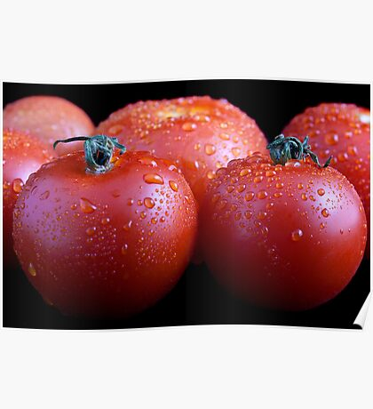 Wet whole tomatos Poster