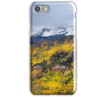 Telluride iPhone Case/Skin