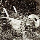 Abandoned wooden wheelbarrow by Robert Down