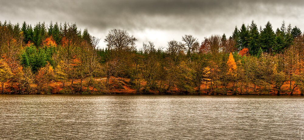 Fall Lake by Gert Lavsen